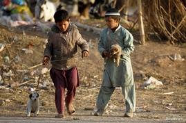 Children play with puppies at an Afghan refugee camp in Islamabad, Pakistan, Feb. 2, 2018.