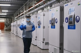 FILE - A worker passes a line of freezers holding coronavirus disease (COVID-19) vaccine candidate BNT162b2 at a Pfizer facility in Puurs, Belgium in an undated photograph.