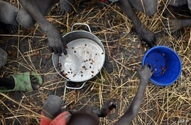 FILE - Children collect grain spilled on a field from food aid bags that ruptured upon ground impact following a food drop from a plane at a village in Ayod county, South Sudan, Feb. 6, 2020.