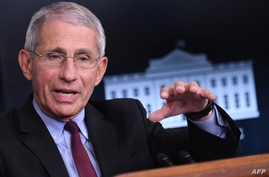 (FILES) In this file photo Director of the National Institute of Allergy and Infectious Diseases Anthony Fauci speaks during an…