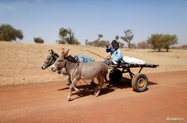 FILE - Malian children ride on a donkey cart on the road between Timbuktu and Douentza.