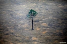 An aerial view shows a deforested plot of the Amazon near Porto Velho, Rondonia State, Brazil, September 17, 2019. REUTERS…