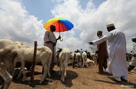 FILE - Men are seen at a livestock market, amid the spread of the coronavirus disease (COVID-19), in Abuja, Nigeria.