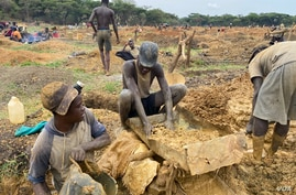 FILE - Illegal artisanal miners look for gold in Mazowe district, about 40 km north of Harare, Zimbabwe, Nov. 26, 2020. (Columbus Mavhunga/VOA)