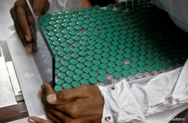 FILE PHOTO: An employee in personal protective equipment (PPE) removes vials of AstraZeneca's COVISHIELD, coronavirus disease …