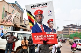 A supporter of Ugandan opposition Presidential candidate Robert Kyagulanyi also known as Bobi Wine carry his electoral campaign…