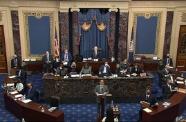 In this image from video, House impeachment manager Congressman Jamie Raskin speaks during the second impeachment trial of former President Donald Trump in the Senate at the U.S. Capitol in Washington, Feb. 10, 2021. (Senate Television via AP)