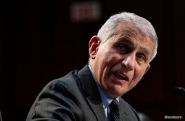Dr. Anthony Fauci, Director at the National Institute Of Allergy and Infectious Diseases speaks at a U.S. Senate Health,…