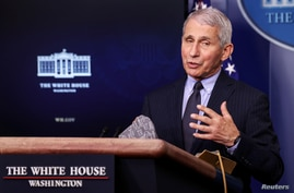 FILE - U.S. National Institute of Allergy and Infectious Diseases Director Anthony Fauci speaks at the daily press briefing at the White House in Washington, Jan. 21, 2021.