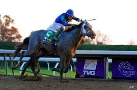 FILE - Jockey Luis Saez rides Essential Quality to win the Breeders' Cup Juvenile horse race at Keeneland Race Course in…