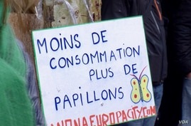 A sign calling for less consumption and more butterfies at a green protest in the French capital. Lisa Bryant.jpg