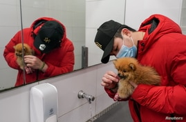 """City resident Thomas Lim washes the face of his Pomeranian puppy named """"Ohoh"""" at a public restroom sink, after the dog got dirty while out for exercise, during a lockdown to curb the spread of a coronavirus disease (COVID-19) outbreak in Sydney, Australia, July 15, 2021."""