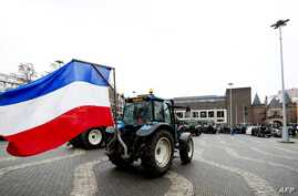 Netherlands agriculture protests