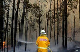 A firefighter manages a controlled burn near Tomerong, Australia, Wednesday, Jan. 8, 2020, in an effort to contain a larger…