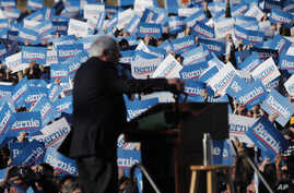 Supporters of Democratic presidential candidate Sen. Bernie Sanders, I-Vt., wave their campaign signs at a rally in Chicago's…