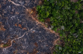 In this Nov. 23, 2019 photo, a burned area of the Amazon rainforest is seen in Prainha, Para state, Brazil. Official data show…
