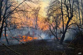 A view of a forest fire burning near the village of Volodymyrivka in the exclusion zone around the Chernobyl nuclear power…