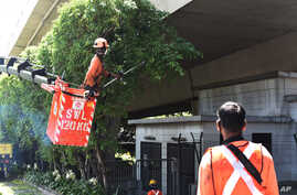 A team of migrant workers from India trim the trees along Holland Road in Singapore on Sunday, Apr. 19, 2020. The number of new…