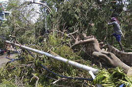 A man chops branches of a tree branch fallen on a road after Cyclone Amphan hit the region in Kolkata, India, Saturday, 23,…