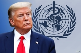 Donald Trump headshot, as US President, over WORLD HEALTH ORGANIZATION logo, partial graphic
