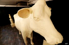 In this Thursday, Aug. 10, 2017, photo, the Butter Cow displayed at the Iowa State Fair in Des Moines, Iowa. More than 1…