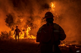 Members of the Grizzly Firefighters fight the Carmel Fire near Carmel Valley, Calif., Tuesday, Aug. 18, 2020. (AP Photo/Nic…