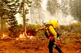 Cal Fire Battalion Chief Craig Newell carries hose while battling the North Complex Fire in Plumas National Forest, Calif., on…