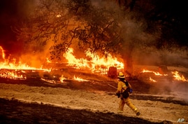 A firefighter passes flames while battling the Glass Fire in a Calistoga, Calif., vineyard Thursday, Oct. 1, 2020. (AP Photo…