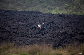 Men chat amid a band of harden lava that flowed from the Pacaya Volcano, near El Patrocinio village in San Vicente Pacaya,…