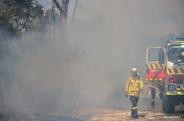 NSW RFS personnel conduct a controlled burn to eliminate fuels in Sydney