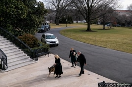 U.S. First Lady Jill Biden guides one of the family dogs, Champ, on his arrival at the White House