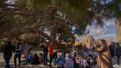 This immortal tree where the holy family availed from its shade is located between a mosque and a Muslims' cemetery. Now families from any religion can hang out under its shade for picnics and good family times to remember. (Hamada Elrasam/VOA)
