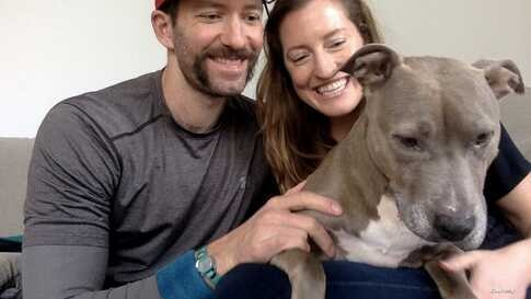 Tom Drescher and his wife, Becky Nolin, adopted Goldie, a Terrier Pitbull mix, during the COVID-19 pandemic. (Courtesy Tom Drescher)