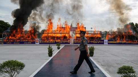 A police officer walks in front of a burning pile of seized illegal drugs during a destruction ceremony to mark the United…