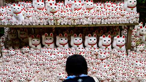 A visitor takes pictures of Maneki statues, also known as beckoning cat, at Gotokuji temple in Tokyo, Japan.
