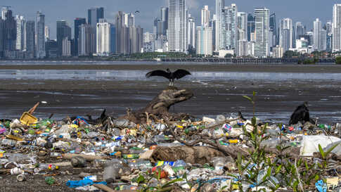 Vultures are seen over garbage, including plastic waste, at the beach of the Costa del Este neighborhood in Panama City, June 08, 2020, during the World Oceans Day.