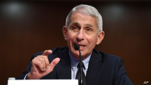 Dr. Anthony Fauci, director of the National Institute for Allergy and Infectious Diseases.