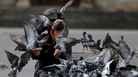 A man wearing a protective face mask feeds a flock of pigeons at Bolivar Square in Bogota, Colombia, July 21, 2020.