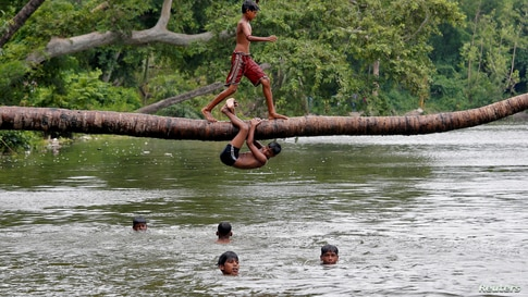 A boy prepares to jump from a fallen coconut tree into a lake on a hot summer day in Kolkata, India.