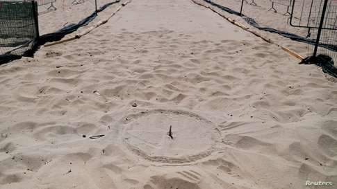 The nesting site where baby turtles are expected to hatch from their eggs and make their way out to the Mediterranean sea is…