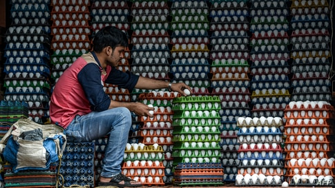 A man arranges eggs for delivery in Mumbai, India.