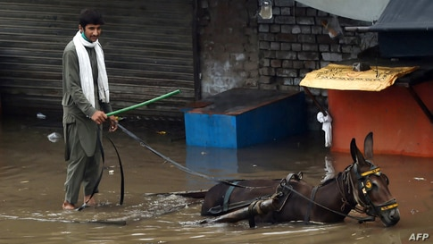 A laborer rides a donkey cart through a flooded street after heavy monsoon rains in Lahore, Pakistan.