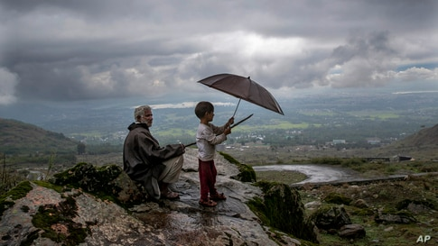 Ali Mohammad, a Kashmiri villager, and his grand son Burhan Ahmed keep an eye on their cattle from a hillock on the outskirts of Srinagar, Indian controlled Kashmir.