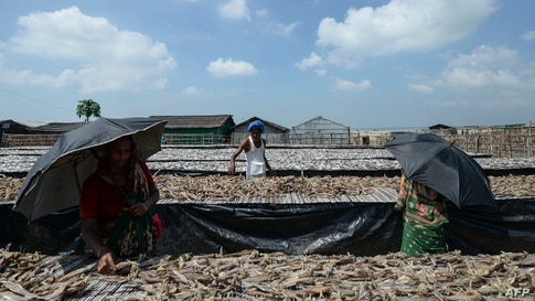 Labourers arrange fish to be sundried at a processing yard in Cox's Bazar on October 9, 2020. (Photo by Munir Uz zaman / AFP)