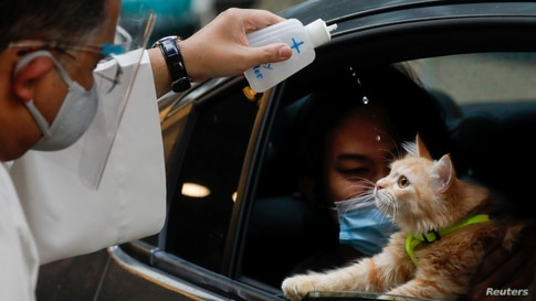 A Catholic priest sprinkles holy water on a cat at a drive-thru pet blessing amid the COVID-19 outbreak on World Animal Day, in Eastwood Mall, Quezon City, Philippines.