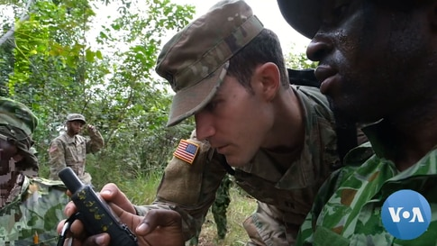 'Future of Gabon' at Stake in Counterpoaching Fight