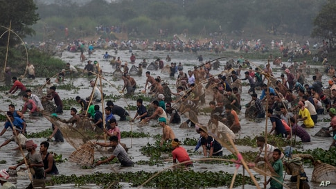 Villagers participate in community fishing as part of Bhogali Bihu celebrations in Panbari village, some 50 kilometers (31 miles) east of Gauhati, in the northeastern state of Assam, India.