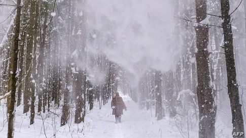 A woman walks along a forest path during a snowfall near the village of Lyubuchany outside Moscow on February 12, 2021. (Photo…