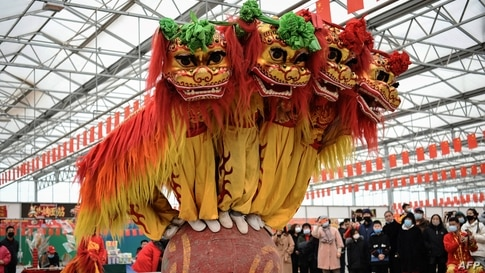 Folk artists perform a lion dance during the Lunar New Year celebrations in a village in Zhangjiakou, in northern China's Hebei province.