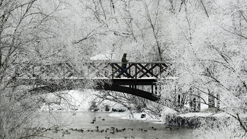 A man walks along a bridge over the Yauza river in front of trees covered with hoarfrost on a cold day in Moscow, Russia.